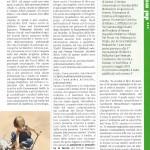 Dal Giornale del: COMITATO STEFANO VERRI